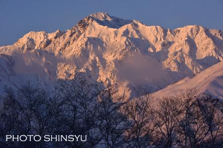 朝日に輝く五竜岳