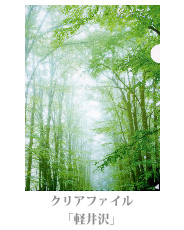 clearfile_11