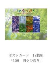 postcard_17