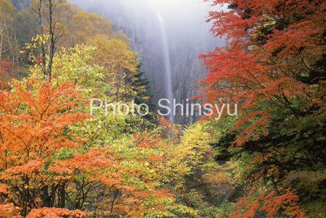 秋色の米子渓谷 権現滝