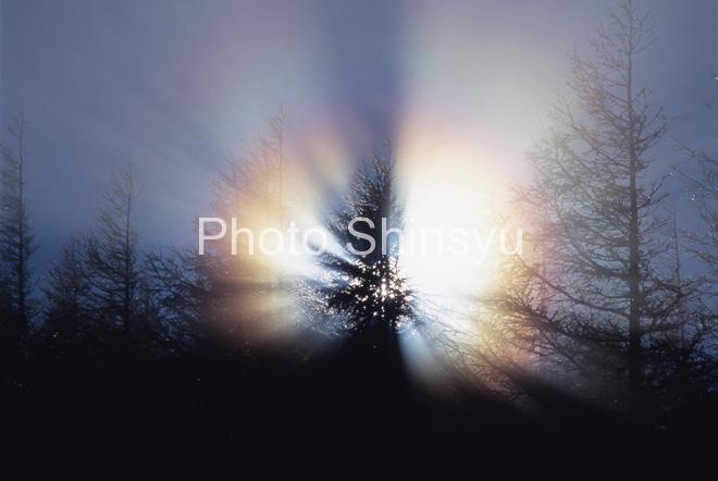 虹色に輝く朝の光