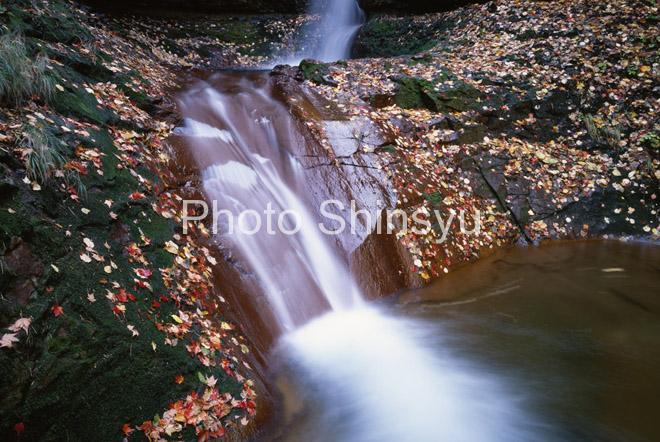 秋の米子渓谷
