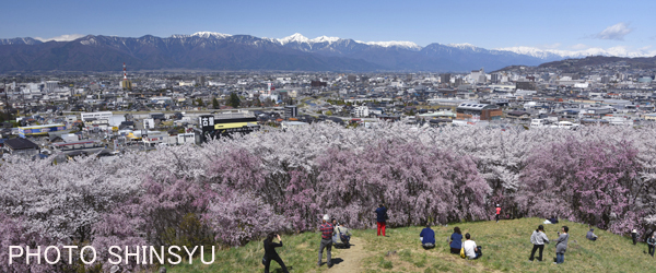 弘法山古墳からの北アルプス連峰と松本市