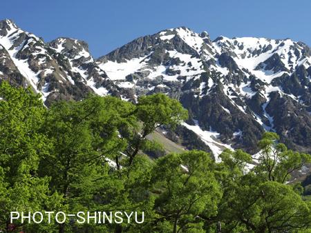 新緑と残雪豊かな穂高