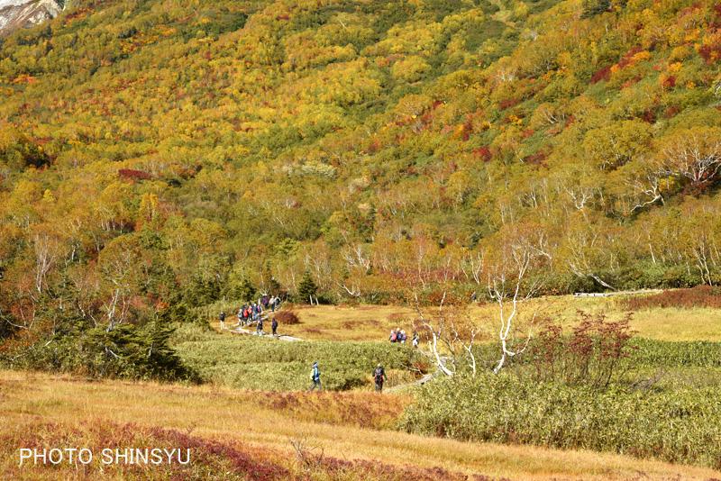 紅葉の栂池自然園と登山者