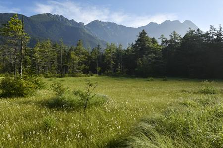 田代湿原と穂高連峰