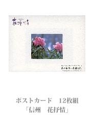 postcard_15